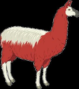 Lama in Hummer Blog rot weiß